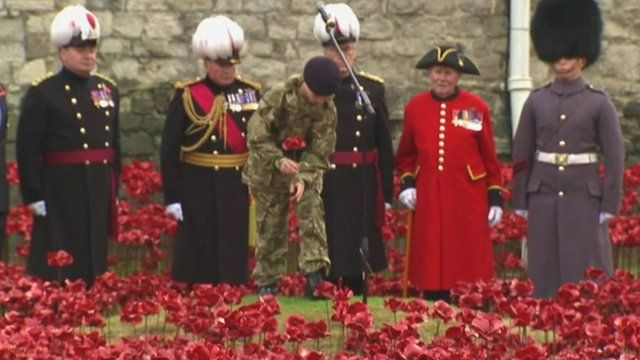 The final poppy being planted