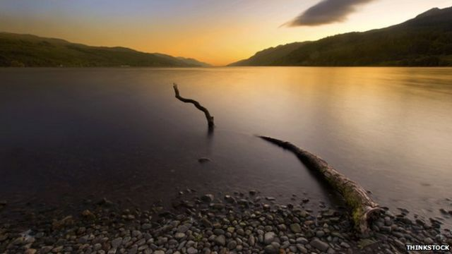 Fallen branches 'could explain Loch Ness Monster sightings'
