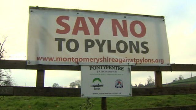 Campaigners are opposed to the pylons