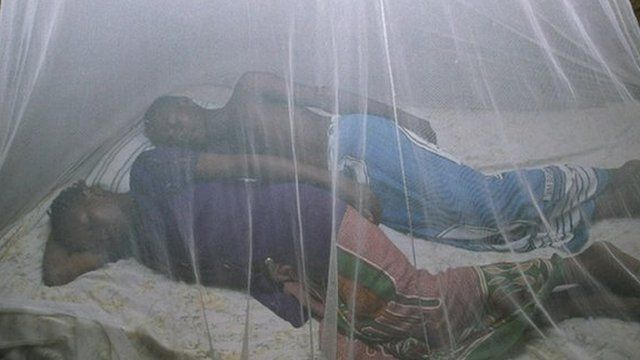 50% of those at risk now have access to mosquito nets