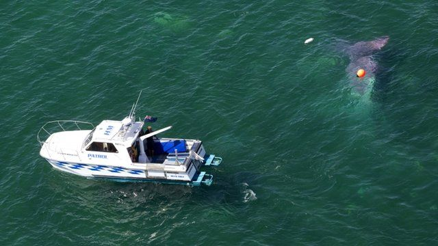 Patrol ship in Lake Taupo
