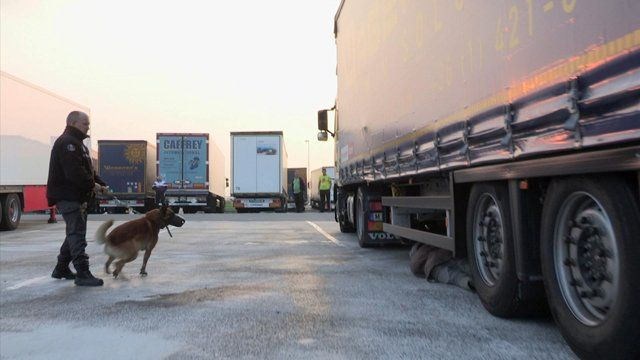 Police dog finds migrant hiding under lorry