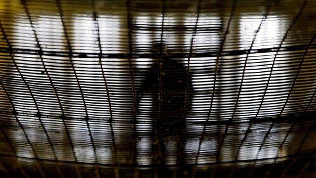 A prisoner in Pentonville prison