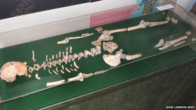 Blodwen the skeleton