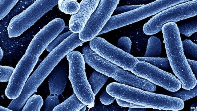 Doctors 'should snoop on antibiotic prescribing'