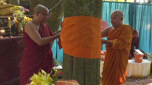 Monks ordaining trees