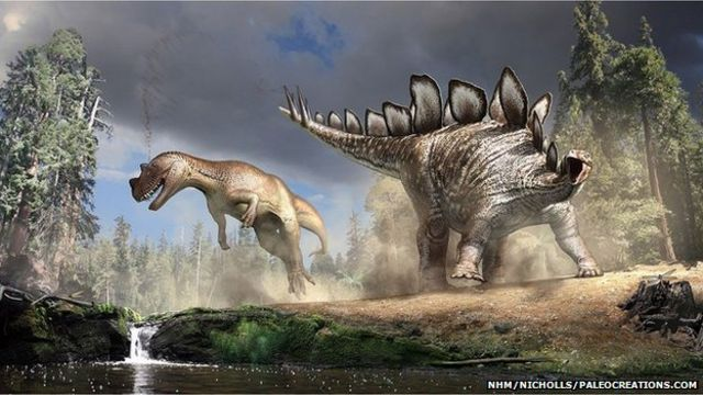 Graveyard clue to stegosaur plates