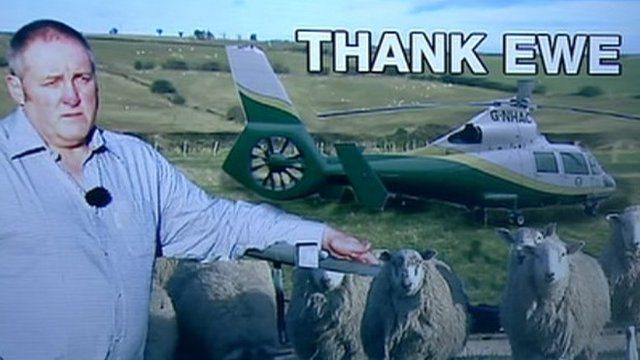 Colin Whitfield with his sheep and the air ambulance