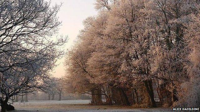 Winter in Worden Park, Leyland