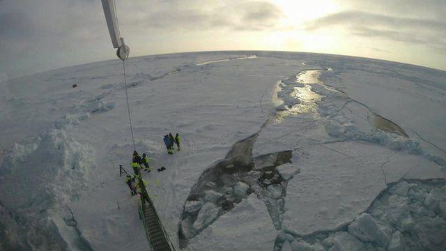 Scientists in the Arctic