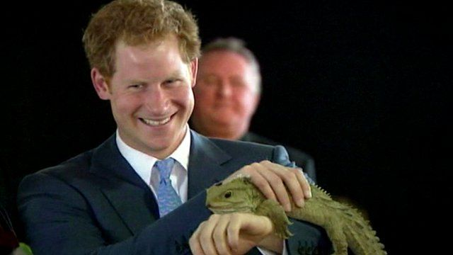 Prince Harry holds 100-year-old reptile