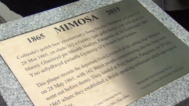 Dathlu hwyliad y Mimosa yn Lerpwl
