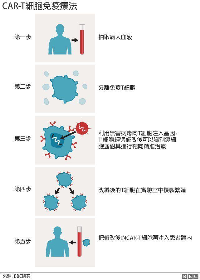 免疫治疗原理