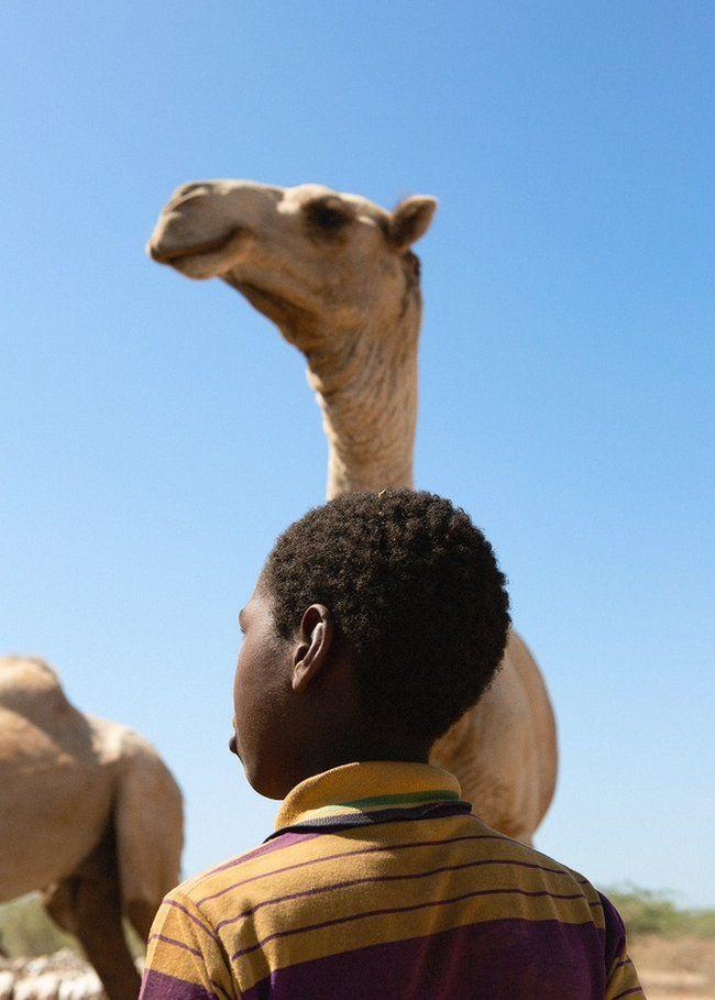 Boy standing next to a camel
