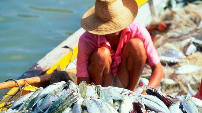 Pescadores en Seychelles.