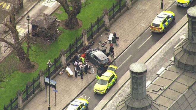 Бригады скорой помощи и полиция возле Вестминстерского дворца