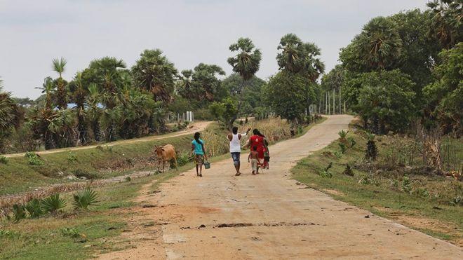 மன்னார் பகுதி