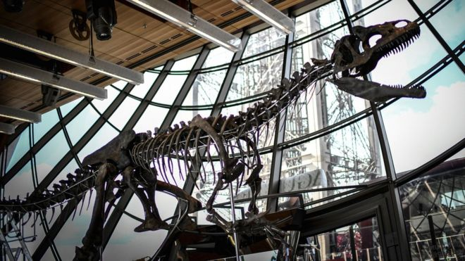 A skeleton of a carnivorous dinosaur on display at the first floor of the Eiffel Tower in Paris, 2 June 2018