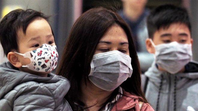Откуда берутся коронавирусы и почему они так опасны?