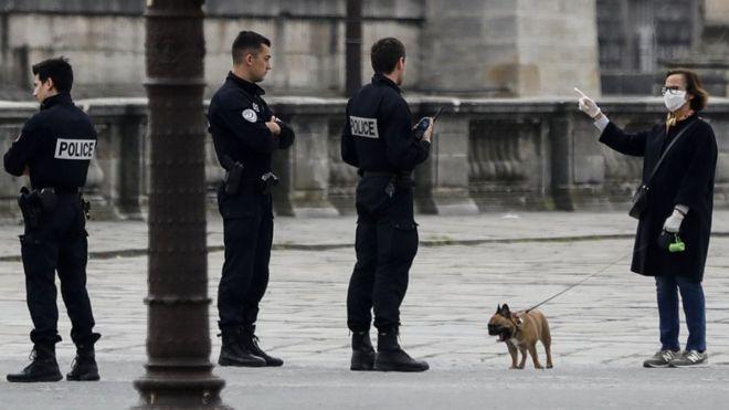 Французские собаки давно просят ужесточить карантин. Им надоело выгуливать всех соседей хозяина