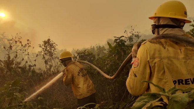 Brigadistas do Prevfogo atuando no Pantanal