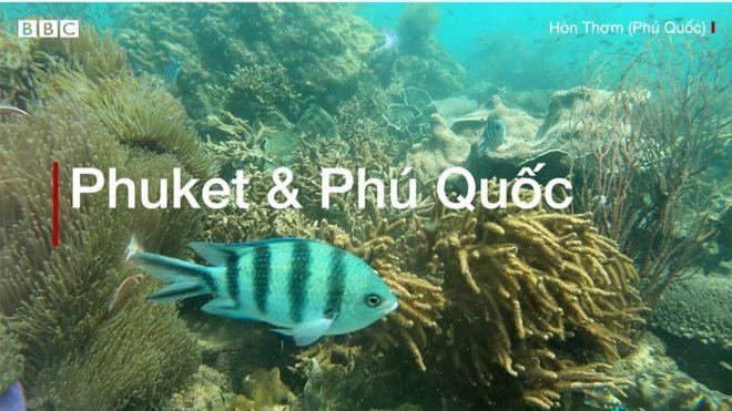 Phuket và Phú Quốc