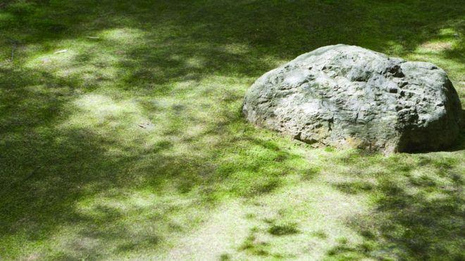 Wabi-sabi là một phần quan trọng của thẩm mỹ học Nhật Bản