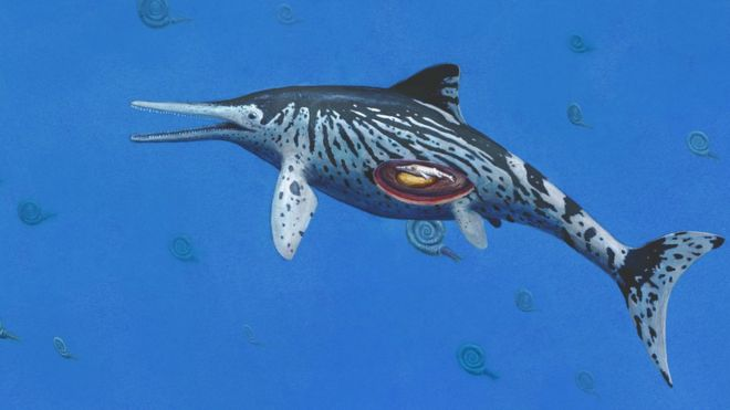 Deniz ejderhası çizimi