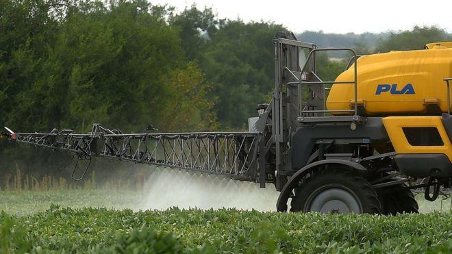 Plantação de soja sendo tratada com agrotóxicos na argentina