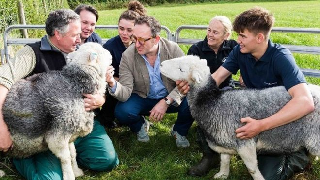 Gene bank project to protect Herdwick sheep breed - BBC News