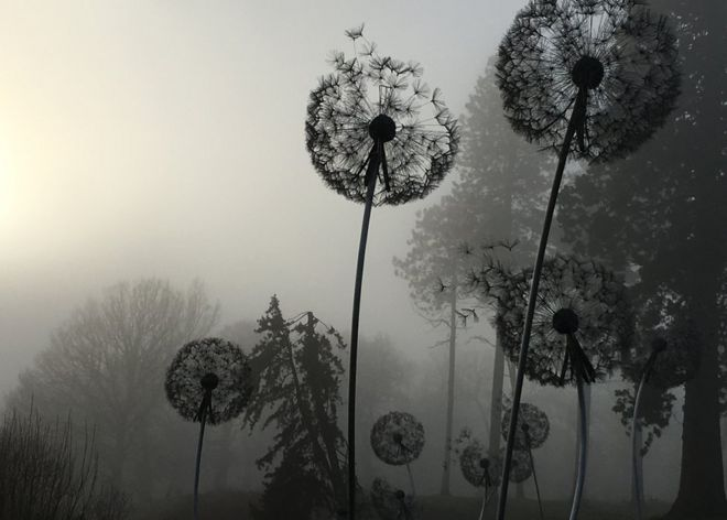 Dandelion metal sculptures