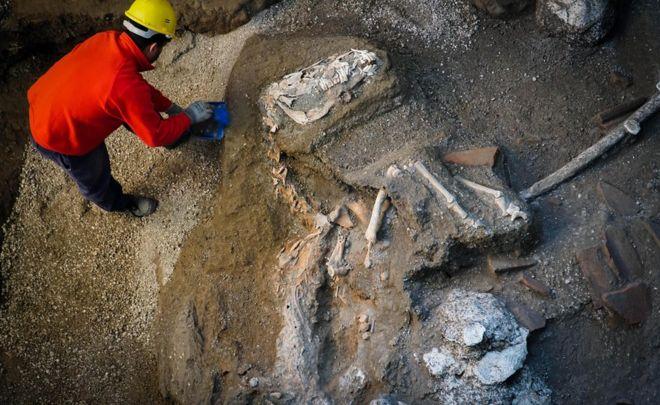 В Помпеях нашли останки лошади в упряжке