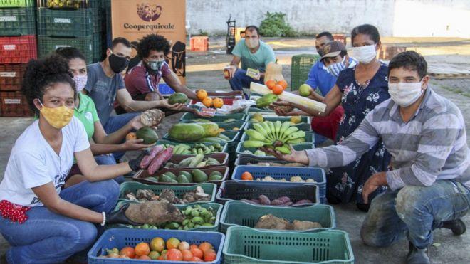 Coronavírus: 'consórcio de doação' leva toneladas de alimentos produzidos por comunidades quilombolas e caiçaras a bairros pobres de SP