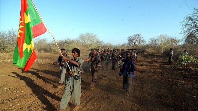 Adda Bilisummaa Oromoo: ''Waraana dhaabne malee hin