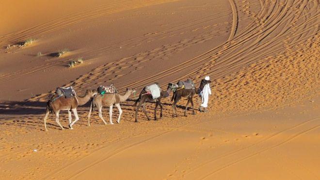 Saharada berber karvanı