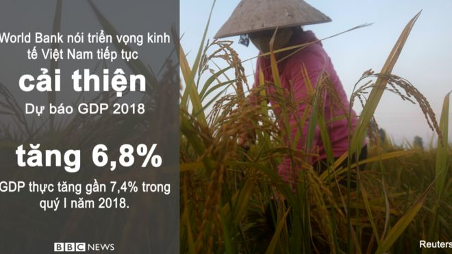Trích báo cáo World Bank