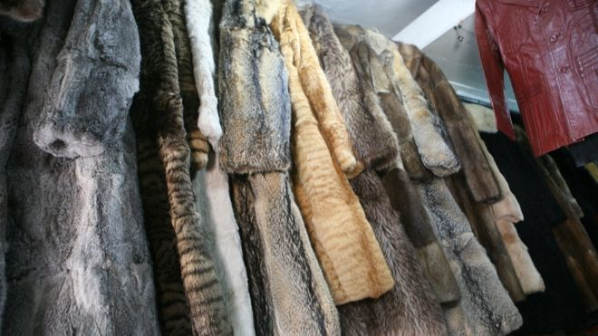 Fur coats on a rack