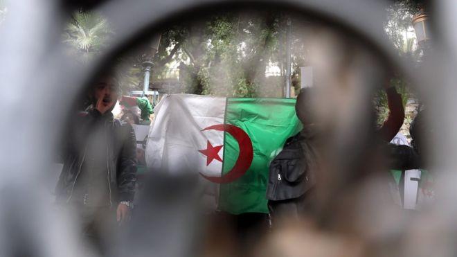 c8ffab420 مظاهرات الجزائر: ماذا يحدث في الكواليس؟ - BBC News Arabic
