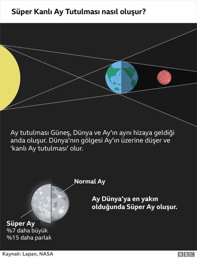 Ay tutulması şeması