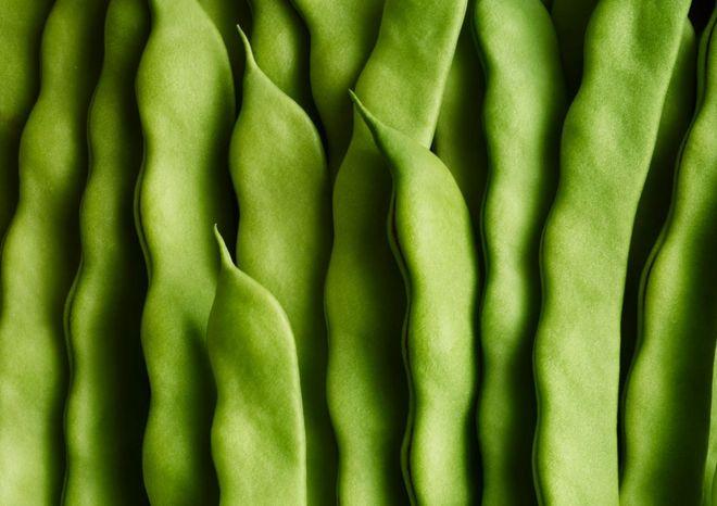 Yeşil fasulyeler