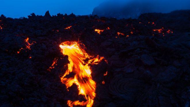 فعالیت آتشفشانی 'به ظهور دایناسورها کمک کرد - ربکا مورل