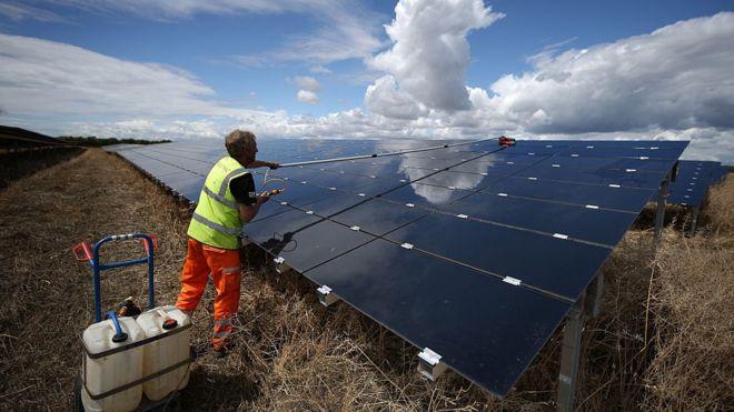 Man cleaning solar panels at Landmead solar farm