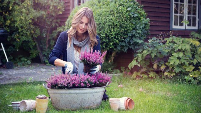 Женшина в своем саду