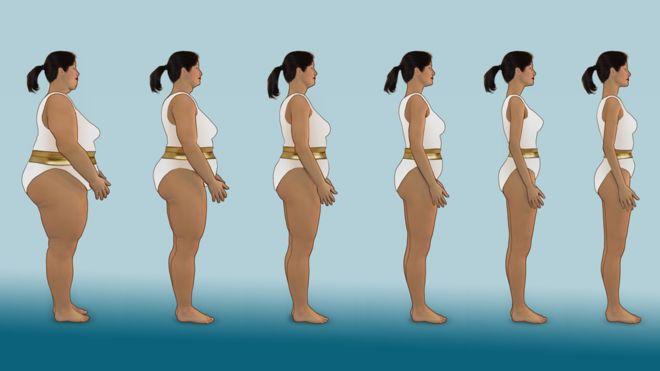 Dieta balanceada segun mi peso y estatura