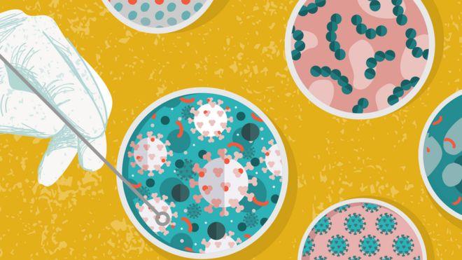 Ilustración de virus en petri