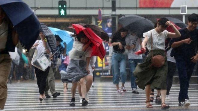 توفان در ژاپن برق ۱۵۰ هزار خانه را قطع کرد