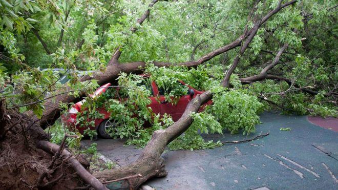 МЧС предупредило о новом шторме в Москве