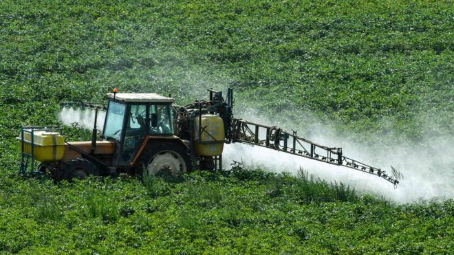 Una máquina rocía un pesticida