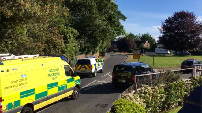 Brockenhurst crash: Woman dies as car and lorry collide