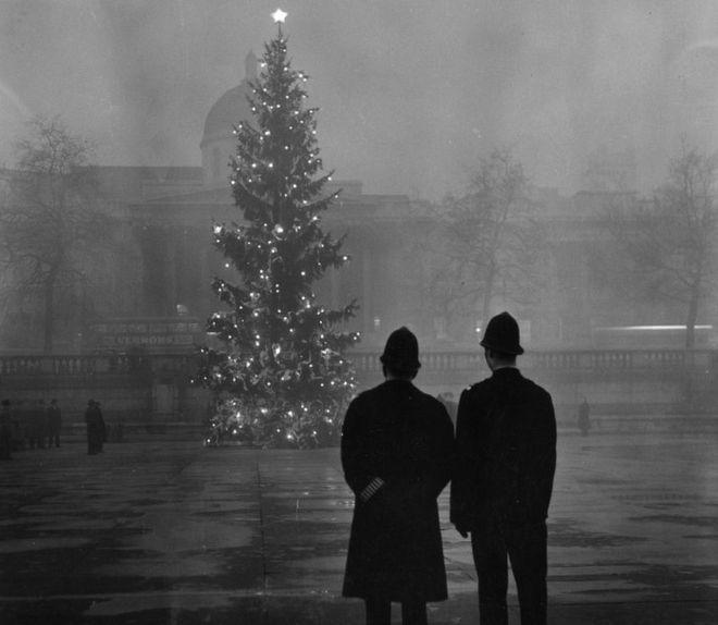 伦敦特拉法加广场的圣诞树